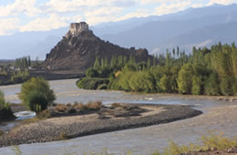 sightseeing tours in ladakh