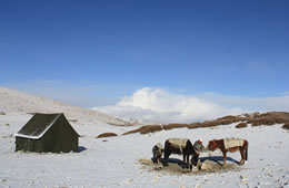 winter trekking in ladakh
