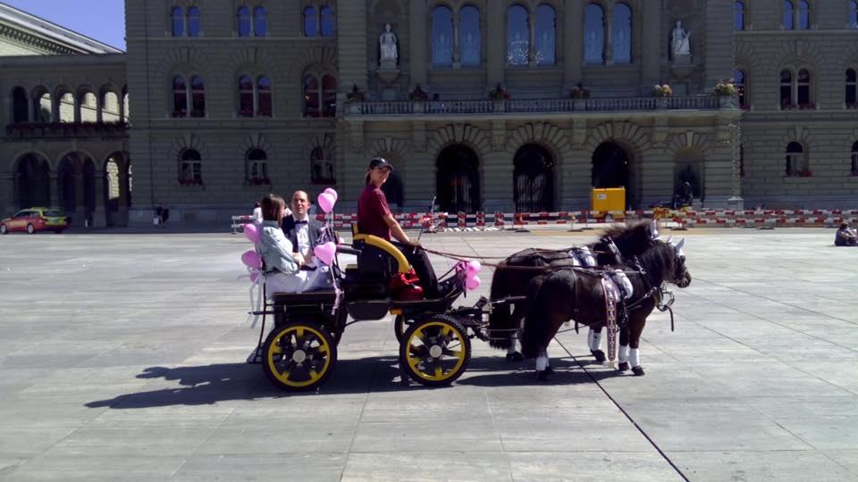 Hochzeitskutsche vor dem Bundeshaus