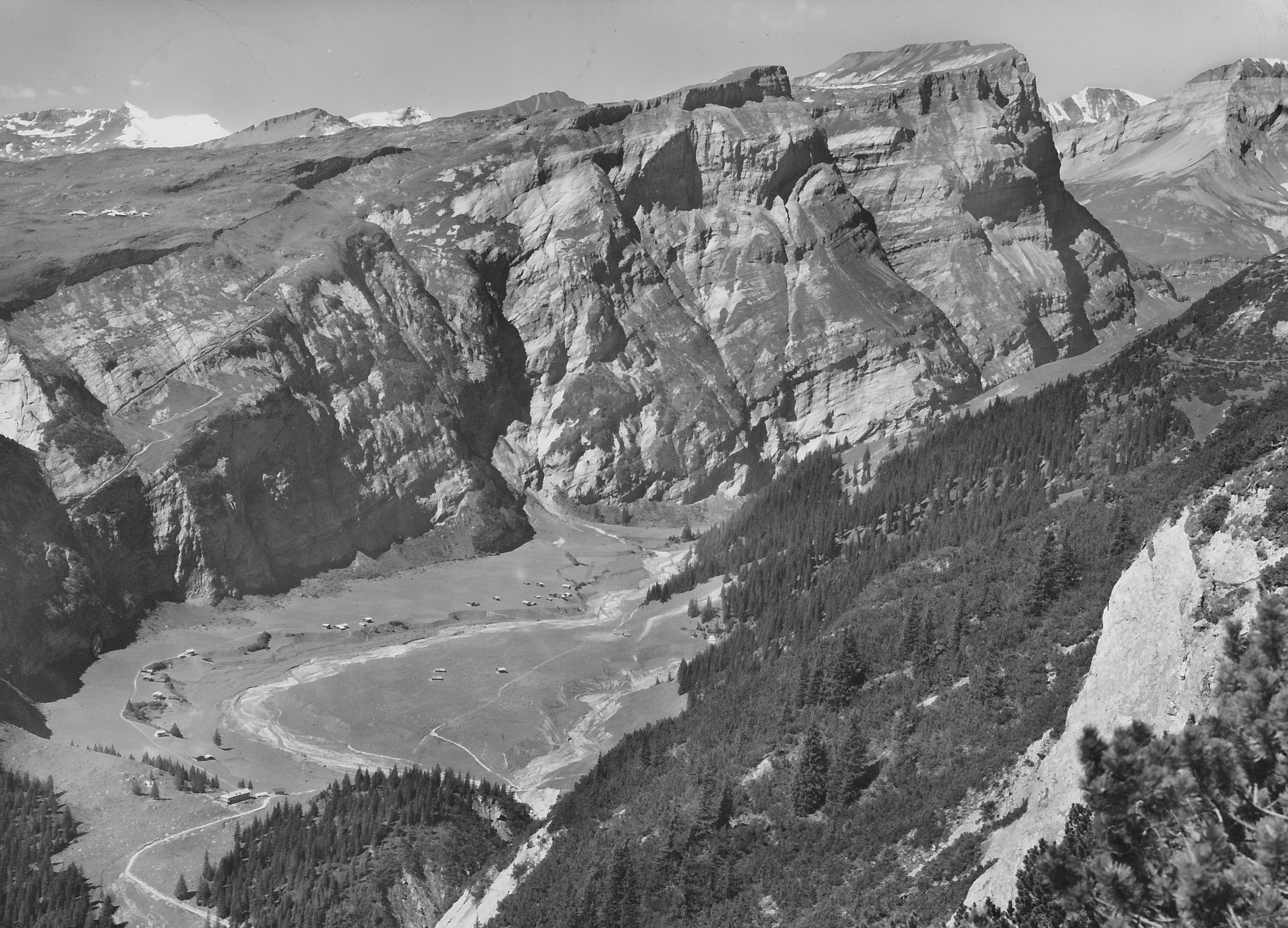 Bargis 1960