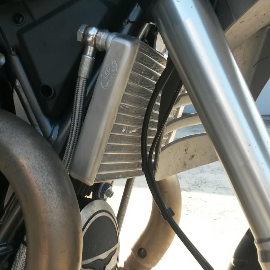 Oil radiator by Guareschi Moto - Guzzi V85